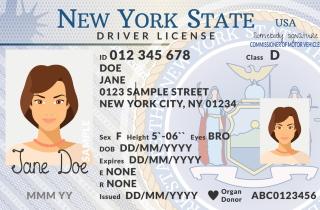 newyork_license_sm
