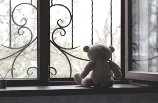 Teddy bear in window