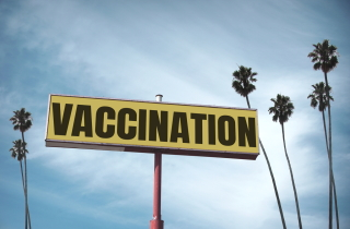Vaccination sign surrounded by palm trees