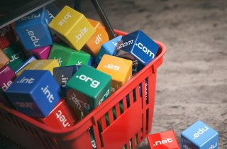 Shopping basked full of web domains