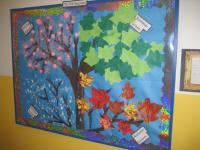Berkeley- Seasons bulletin board