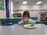 Sterling Heights- Healthy Lunches