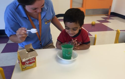 Make Your Child's Learning Experience the Best It Can Be