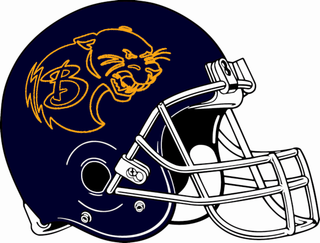 Baldwin Panthers
