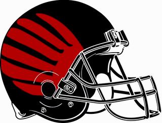 Allendale Falcons