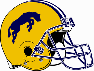 Portage Central Mustangs