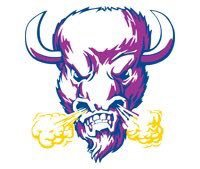 Arkansas Baptist Buffaloes