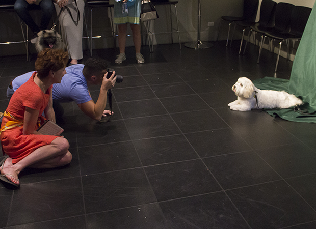 Julie White looks on as a pretty pup has some glamor shots taken.
