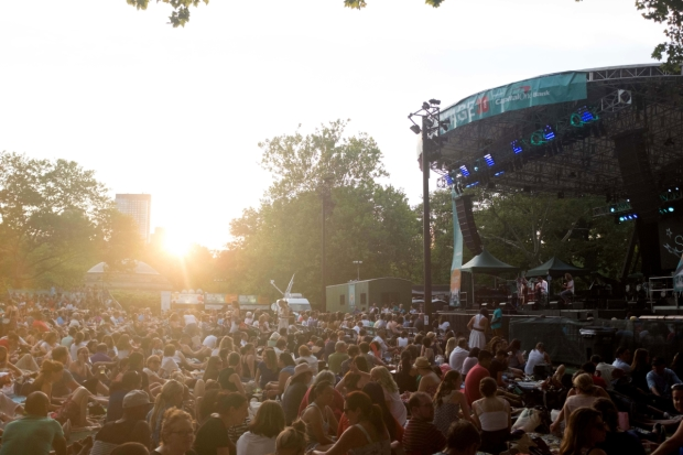 The crowd at Central Park's SummerStage.