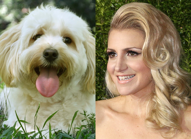 Alfie (left) will play the canine doppelgänger of Annaleigh Ashford (right) in the new Broadway production of Sylvia.