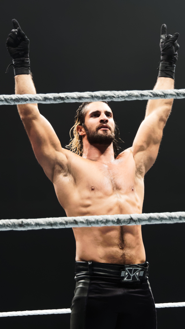 """Seth Rollins is the reigning WWE World Heavyweight Campion. He is 6'1"""", weighs 217 pounds, and has great abs."""