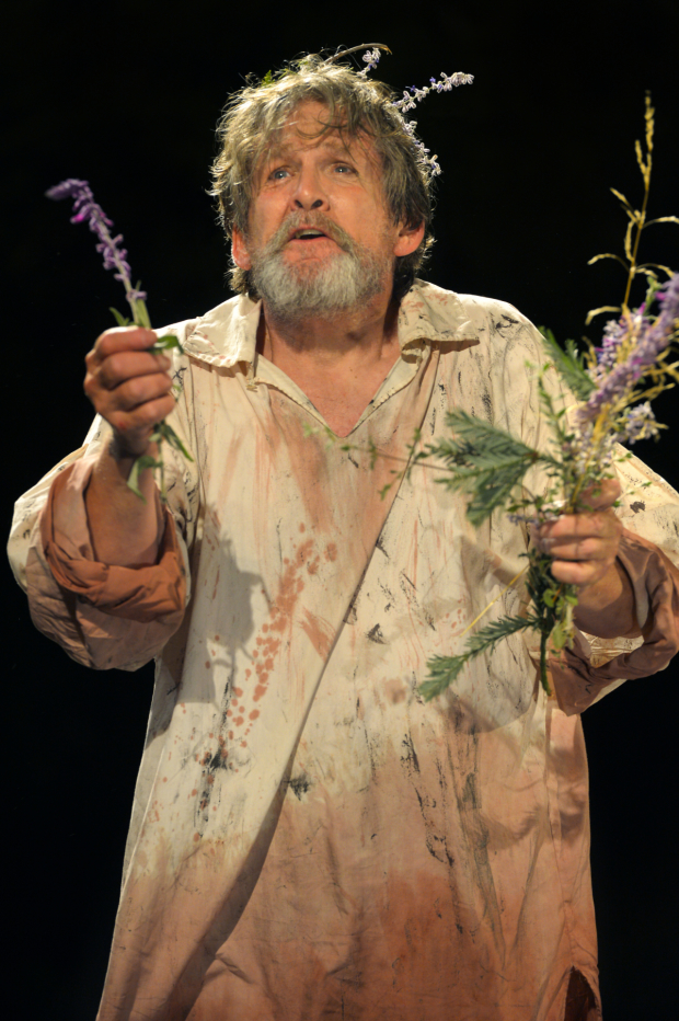 Anthony Heald stars in King Lear, playing now through October 11.