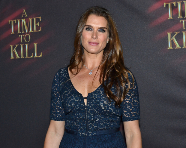 Brooke Shields will join the cast of Celebrity Autobiography next month.