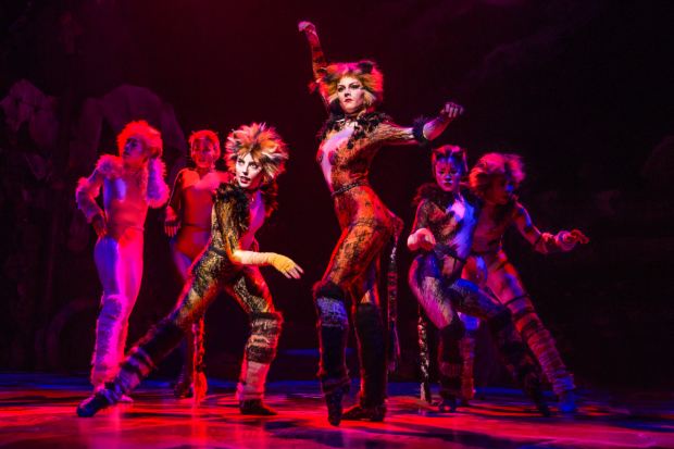 Kim Fauré plays Demeter and Christine Cornish Smith plays Bombalurina in Cats.