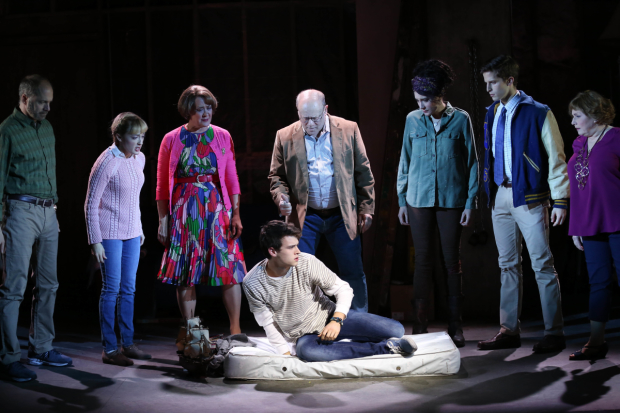 Daniel Jenkins, Laura Darrell, Karen Ziemba, Joel Blum, Dee Roscioli, Blake Zolfo, Ann Arvia, and Brandon Flynn (on floor) star in Kid Victory at the Vineyard Theatre.