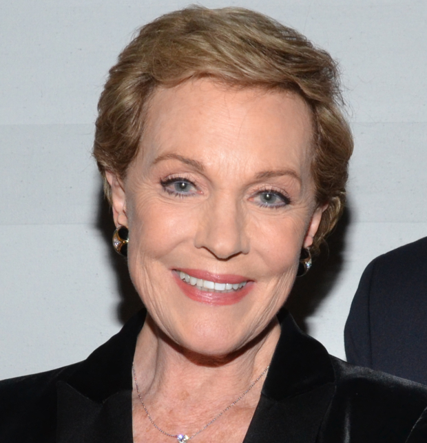 Julie Andrews is the star of the new Netflix series Julie's Greenroom.