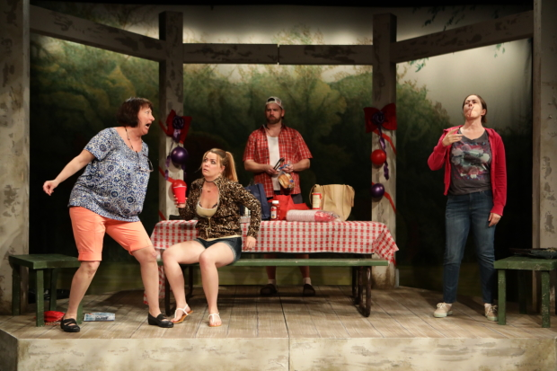 Adrianne Krstansky, Sara Elizabeth Bedard, Bryan T. Donovan, and Christine Power in Barbecue, directed by Summer L. Williams, at Lyric Stage Company.