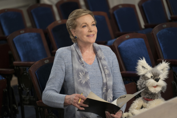 Julie Andrews heads the cast of the new Netflix series Julie's Greenroom.