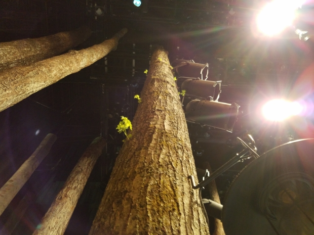 New leaves and branches grow on one of the tree trunks in the set of Come From Away.