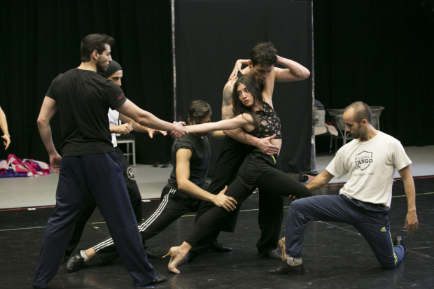 The cast of Arrabal, directed by Sergio Trujillo, in rehearsal at American Repertory Theater.