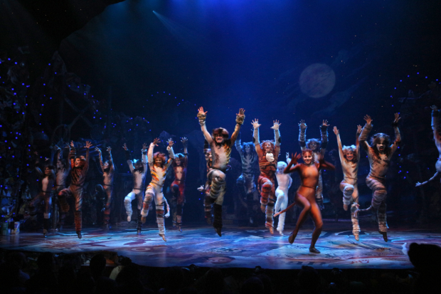 Cast members from Cats will take part in an Andrew Lloyd Webber singalong in Central Park.