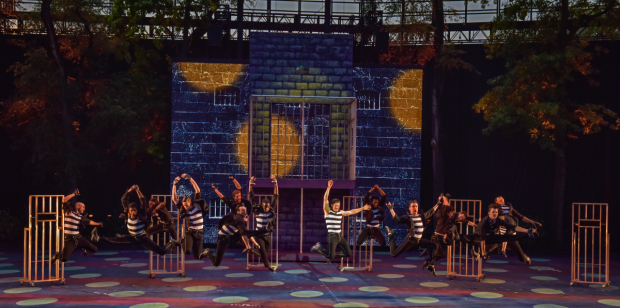 The cast of All Shook Up, directed by Dan Knechtges, at The Muny.