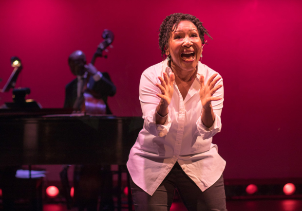 Andrea Frierson wrote and performs the new one-woman musical directed by Murphy Cross and Paul Kreppel.