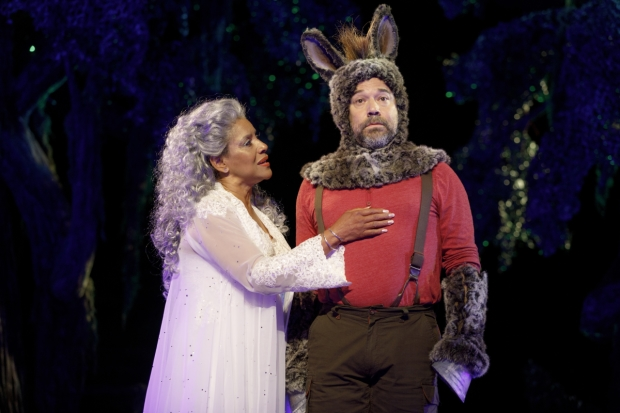 Phylicia Rashad plays Titania, and Danny Burstein plays Nick Bottom in A Midsummer Night's Dream.