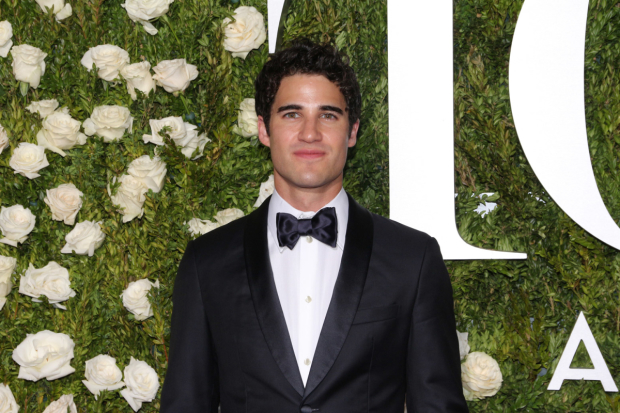 Darren Criss will be a headliner at the Third Annual Elsie Fest, a one-day outdoor music festival he cofounded.