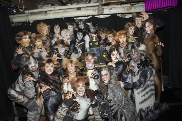 The cast of Cats celebrates one year on Broadway.
