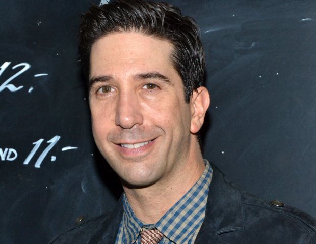 David Schwimmer will direct Plantation! at Lookingglass Theatre.