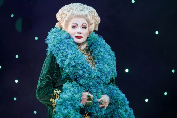 Rondi Reed as Wicked's Madame Morrible.