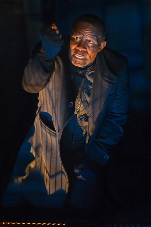 John Douglas Thompson stars in the title role of Hamlet.