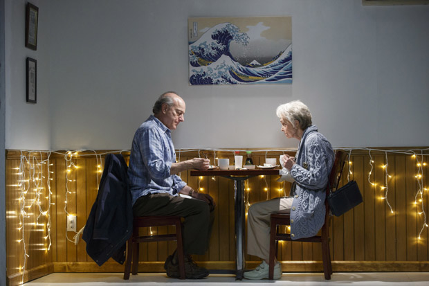Peter Friedman and Deanna Dunagan star in Max Posner's The Treasurer, directed by David Cromer, at Playwrights Horizons.