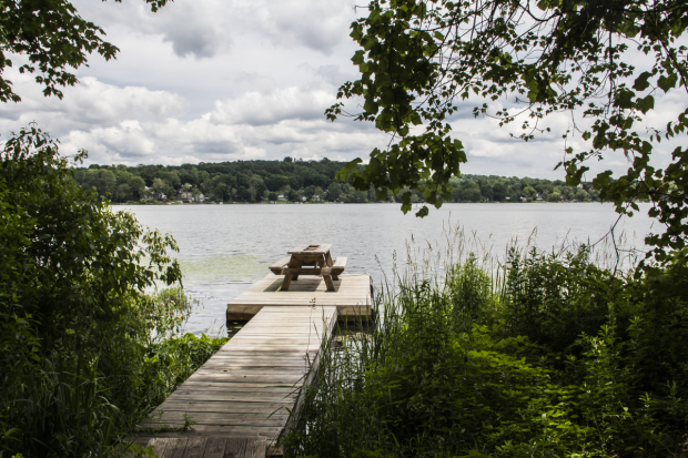 The view from SPACE's newly built dock, overlooking Peach Lake.