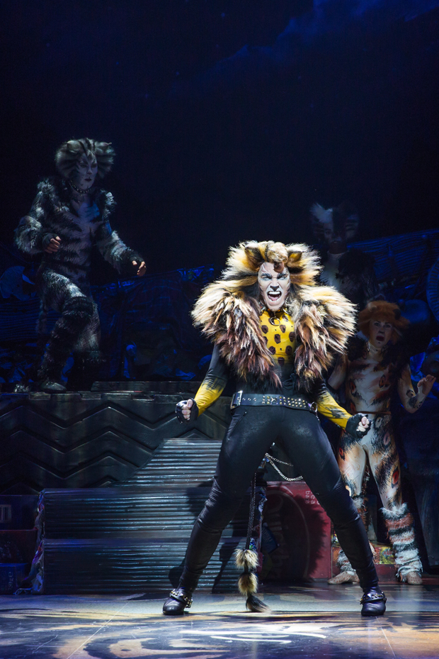 Tyler Hanes as Rum Tum Tugger in Cats at Broadway's Neil Simon Theatre.