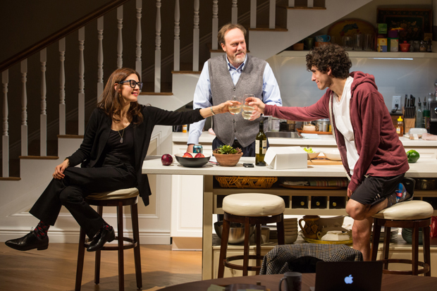 Jessica Hecht, Andrew Garman, and Ben Edelman star in the world premiere of Joshua Harmon's Admissions, directed by Daniel Aukin, at Lincoln Center Theater.