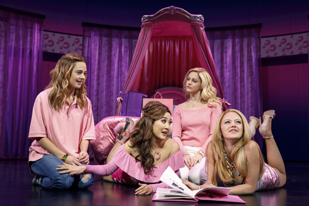 Erika Henningsen, Ashley Park, Taylor Louderman, and Kate Rockwell star in Mean Girls on Broadway. Park and Louderman are nominated for Tony Awards, while Park and Rockwell are nominated for Drama Desk Awards.