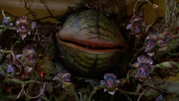 The mean, green mother from outer space, Audrey II.