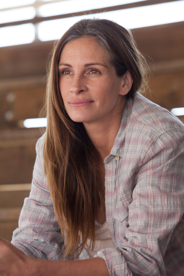 Julia Roberts is an Oscar nominee for her performance as Barbara Fordham in the film adaptation of Tracy Letts' Pulitzer Prize-winning August: Osage County.