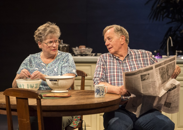 Alyson Reed and Sam Anderson in Kimber Lee's different words for the same thing, directed by Neel Keller at Center Theatre Group in Los Angeles.
