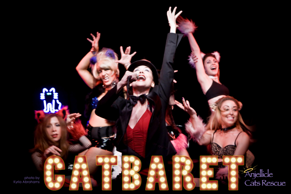 Laura MacLean, Renee Kay, Samantha Tuffarelli, Susan Campanaro, and Megan Maroud appeared in last year's Catbaret at Stage 72, benefiting Anjellicle Cats Rescue.