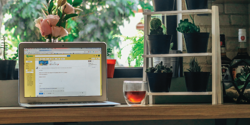 #WebWeds: What's New With Email Marketing in 2019?