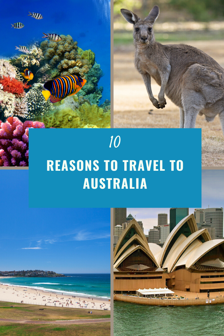 images?q=tbn:ANd9GcQh_l3eQ5xwiPy07kGEXjmjgmBKBRB7H2mRxCGhv1tFWg5c_mWT Reasons To Travel To Australia Details @capturingmomentsphotography.net