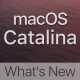 macOS Catalina Whats New Tutorial