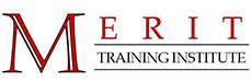 Merit Training Institute Talent Network