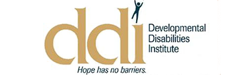 DDI Talent Network