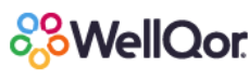 Jobs and Careers at WellQor>