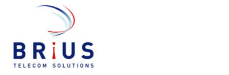 Jobs and Careers at Brius Telecom Solutions LLC>