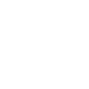 This is the restaurant logo for Butchertown Grocery